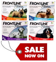 frontline_dogs