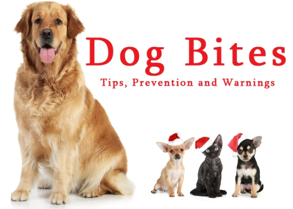 Dog-Bites-Prevention-Tips