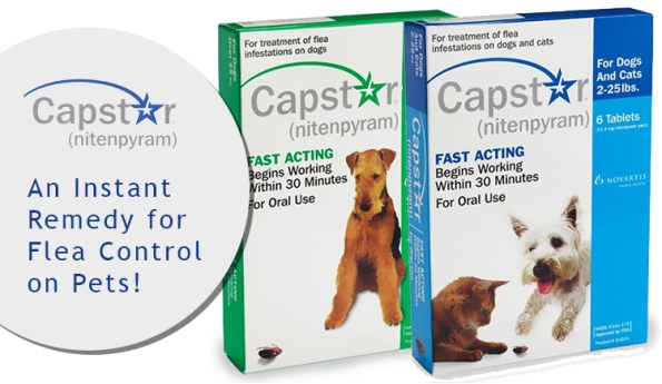 Capstar – Fastest Treatment for Killing Adult Fleas in Cats and Dogs