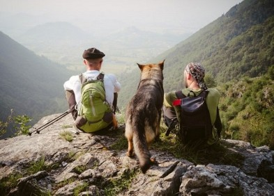 Tips for Hiking with Dog