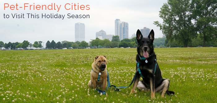Seven Most Pet-Friendly Cities In US To Visit This Holiday Season