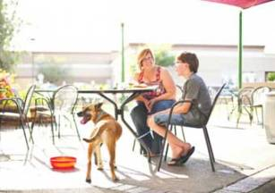Phoenix-AZ Pet Friendly