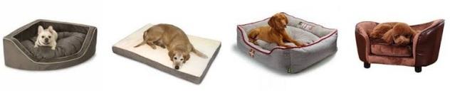 Budgetpetcare Pet Care Supplies Our Blog