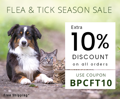 flea and ticks season sale
